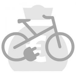 lenen voor een Elektrische fiets